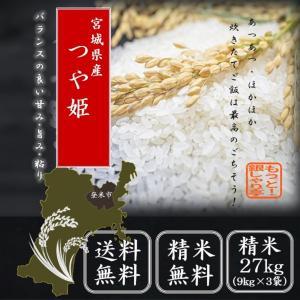 令和2年産 宮城県産つや姫27kg( 9kg×3袋)  送料無料 精白米