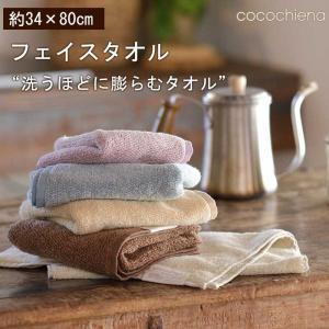 3枚まで ゆうパケット対応 タオル フェイスタオル マイクロファイバー スイッチパイル  洗濯  超吸水 内祝い プレゼント(cocochiena ココチエナ)|mou