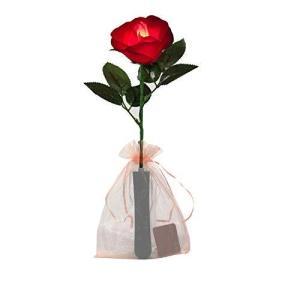 Ajaol バラ LED造花 LEDライトレッドローズ 花束造花 電池式 プレゼント バレンタイン・デー お誕生日 アニバーサ|mount-n-online