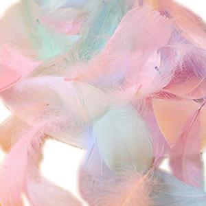 Lumierechat 羽シャワー フェザーシャワー ホワイト 結婚式 ブライダル フラワーシャワー たっぷり200枚 約40名分 a-|mount-n-online