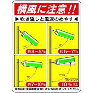 東京化成 吹き流し用目安標識 吹き流しと風速のめやす ポリプロピレン製 600450mm WE61|mount-n-online