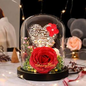 Shirylzee 薔薇造花 LEDライト 100つ言語「愛してる」 花 ギフト 妻 彼女 友達 USB式 おしゃれ 贈り物 誕生日 クリス|mount-n-online