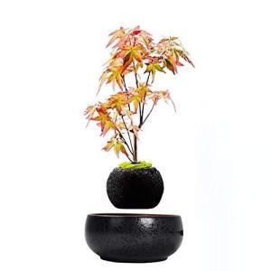 磁気浮上エア盆栽サスペンションフラワーポット鉢植え浮揚浴槽 THINKER1999 (Black)|mount-n-online