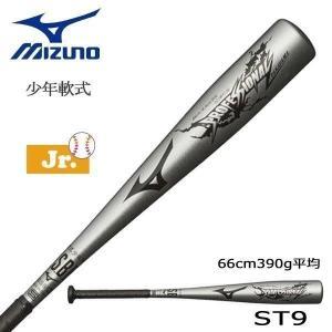 野球 バット ジュニア 少年軟式用 金属製 ミズノ MIZUNO プロモデル 高山型 シルバー 66cm390g平均 新球対応|move