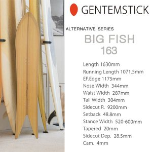スノーボード 板 18-19 GENTEMSTICK ゲンテンスティック BIG FISH 163 ビッグフィッシュ オルタネイティブシリーズ|move