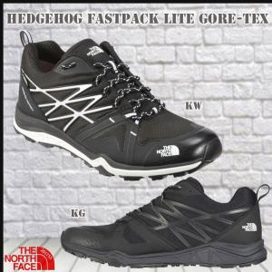 THE NORTH FACE(ザノースフェイス) HEDGEHOG FASTPACK LITE GORE-TEX (TNF_2017SS)|move
