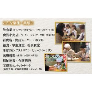 マスクリア ベーシック 用 交換フィルム (5枚入) M-FILM-5 / 透明衛生マスク|moveon-shop|05