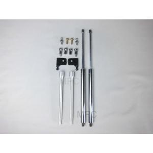 TECHNICA SPORTS/VISION ボンネットダンパー インテグラ/DC1,DC2,DB8 mpc