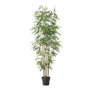 IKEA イケア FEJKA 人工観葉植物 竹 (501.992.77)
