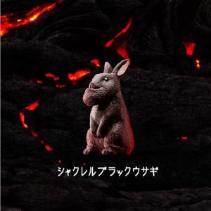 パンダの穴 シャクレルブラック / タカラトミーアーツ 【選択出来る。単体販売】|mpitsuki-ys|07