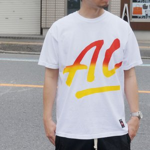 SALE セール トニーアルバ TONY ALVA Tシャツ BIG ALVA LOGO Tee アルバスケート ALVA SLATE ホワイト 白 WHITE|mr-vibes