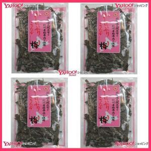 【メール便送料無料】YC中野物産 43グラム  おしゃぶり昆布梅 ×4袋 +税 【ma】|mrokkuni