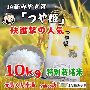 令和2年産 通販 つや姫 宮城県産 10Kg 特別栽培米(減農薬・減化学肥料) 特A地区 つやひめ 一等米 送料無料(一部地域を除く)|ms-genki