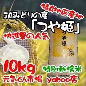 29年産 新米 米 通販 つや姫 宮城県産 10kg 特A地...