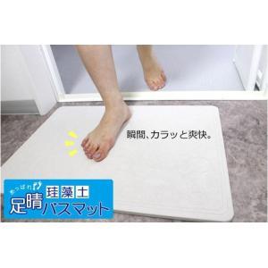 珪藻土 足晴(あっぱれ) バスマット 正規品 送料無料|ms-style-shop