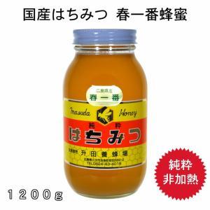 1200g春一番蜂蜜|msdyoho