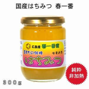 300g春一番蜂蜜|msdyoho