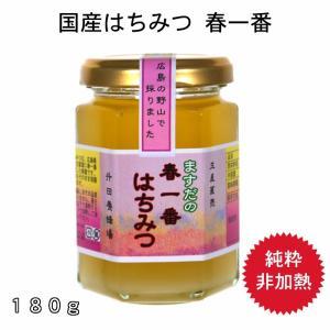 180g春一番蜂蜜|msdyoho