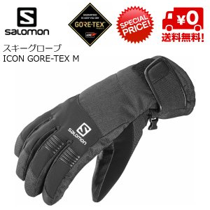 サロモン スキーグローブ ゴアテックス SALOMON ICON GORE-TEX M ブラック [L37607100]|msp
