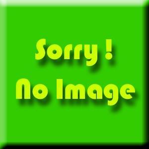 MSP スペシャル リキッド レーシング ワックス フッ素入 レッド SpecialLiquidWax Fulorine Racing RED|msp