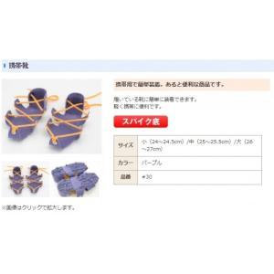 <daido> 携帯靴NS 靴底用滑り止めスパイク 紐を縛り上げることで、履いている靴に簡単に装着 雪道 傾斜地 林業 山林 漁業 釣り 貝掘りに最適 #30 30-daido|msquall-y