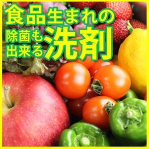 野菜の洗浄剤 除菌 野菜洗い くだもの洗い ホタテ 貝殻 洗浄 抗菌洗浄剤 食品生まれの除菌も出来る洗剤 10袋入り(101106)送料無料(ms)|msstore-1147