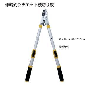 柄の長さが4段階調節 伸縮式ラチェット枝切り鋏 GT809642(210795)  (GT)|msstore-1147