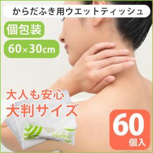 体拭きシート からだふき 大判 ウエットティッシュ ぬれタオル 介護用品 防災グッズ 日本製 クリーン ウエット からだきれいL 60枚 Lサイズ (78673)(ms)|msstore-1147