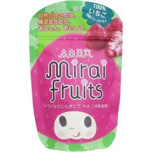 未来果実 ミライフルーツ いちご 10g入 単品1個|mtd