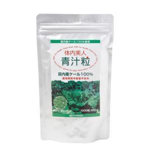 体内美人 青汁粒250g(1000粒)|mtmlife
