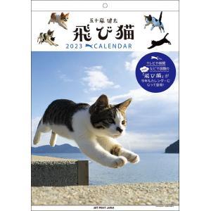 【20%OFF!!】陸・海・空 自衛隊 躍動...の関連商品10