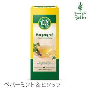 紅茶 ハーブティー オーガニック レーベンスバウム オーガニックハーブティー ペパーミント&ヒソップ 30g(1.5gx20個) LEBENSBAUM 無添加 無農薬 有機|mugigokoro-y