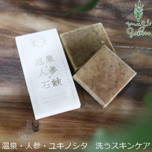 石けん むぎごころ むぎごころの温泉と人参の石鹸  75g 洗顔 石鹸 オーガニック 無添加 送料無料 ノンケミカル スキンケア 洗顔料|mugigokoro-y