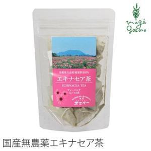 茶 無添加 茶三代一 エキナセア茶 ティーバッグ 1g×10袋 お茶 ちゃさんだい  購入金額別特典あり 正規品 ばん茶 無添加|mugigokoro-y