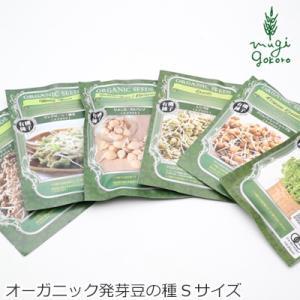 グリーンフィールド プロジェクト オーガニックの種から育てる発芽豆(有機JAS認証取得) Sサイズ 購入金額別特典あり オーガニック|mugigokoro-y