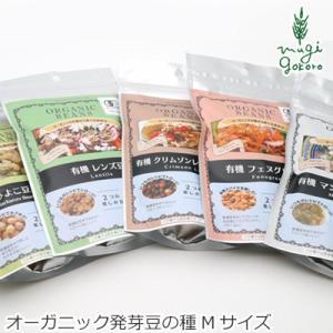 グリーンフィールド プロジェクト オーガニックの種から育てる発芽豆(有機JAS認証取得) Mサイズ 購入金額別特典あり オーガニック|mugigokoro-y