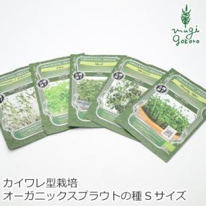 グリーンフィールド プロジェクト スプラウト マイクログリーン(カイワレ型)栽培可 Sサイズ 購入金額別特典あり オーガニック 正規品|mugigokoro-y