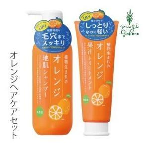 ヘアケアセット 無添加 植物生まれ(オレンジ) 植物生まれのオレンジ地肌シャンプーN 400ml、植物生まれのオレンジ果汁トリートメンN 250g のセット|mugigokoro-y