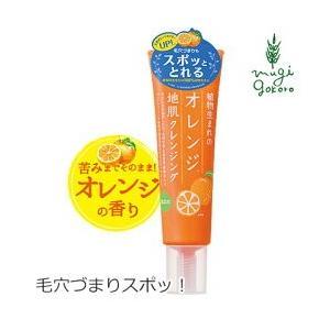 頭皮 クレンジング 無添加 植物生まれ(オレンジ) 植物生まれのオレンジ地肌クレンジングN 130g 送料無料 頭皮ケア 地肌ケア ノンパラベン|mugigokoro-y