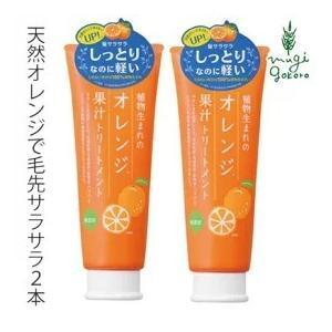 トリートメント 無添加 植物生まれ (オレンジ) 植物生まれのオレンジ果汁トリートメントN 250g×2本セット オーガニック 送料無料 ノンシリコン|mugigokoro-y
