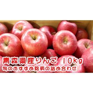 ◆送料無料!青森県産りんご おすすめ詰め合わせ(10kg)...
