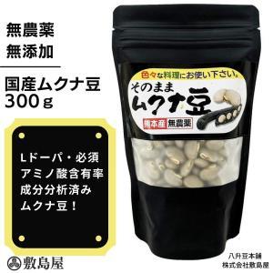 ムクナ豆 天然自然食 生ムクナ豆 300g入