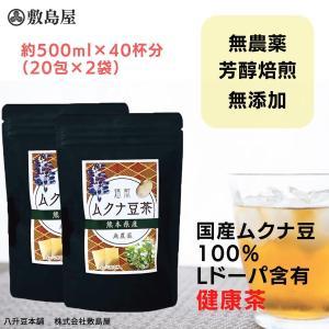 ムクナ豆 焙煎ムクナ豆茶 健康茶 1包500ml用 4g×20包入り 2袋セットのお得な