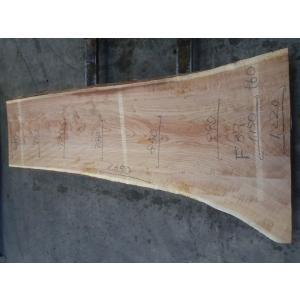 キハダ 一枚板 テーブル ウレタン塗装 2550×680×45 mukusakura