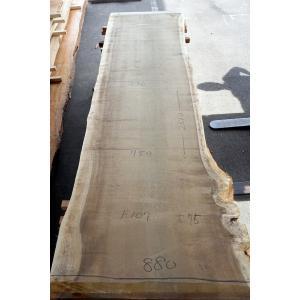 ホオ 朴 一枚板 無垢 テーブル 原板 2810×750 - 860×75 mukusakura