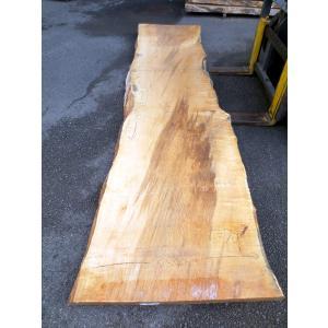 カエデ 楓 一枚板 無垢 テーブル 原板 3520×730 - 890×70 mukusakura