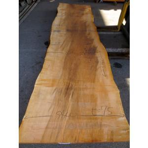 カエデ 楓 一枚板 無垢 テーブル 原板 3340×840 - 940×75 mukusakura