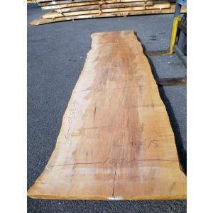 カエデ 楓 一枚板 無垢 テーブル 原板 3370×870 - 1000×75 mukusakura