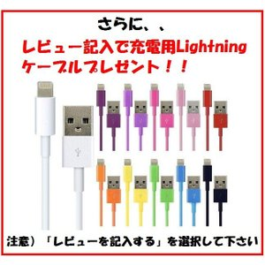 iPad mini/mini2/mini3スマートカバー 4点セット 送料無料|murakumomura|05