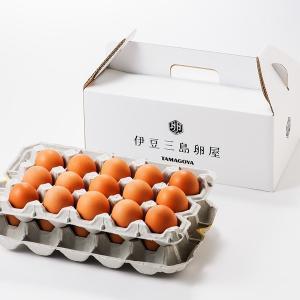 伊豆三島卵屋 たまご専門店 TAMAGOYAの日の出たまご30個入り|muranoeki